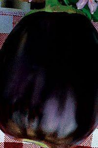 BELLEZZA NERA O BLACK BEAUTY