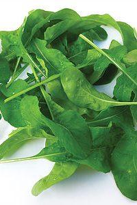 ΡΟΚΑ (Eruca sativa)